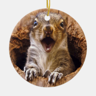 Shocked Squirrel Round Ceramic Decoration