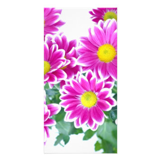 Shocking Pink Daisy Bouquet Custom Photo Card
