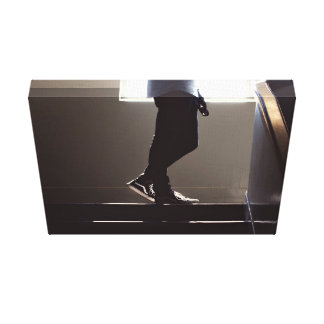 Shoes Themed, A Person'S Legs On The Landing Of Th Canvas Print