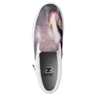 Shoes with sugar glider photo printed shoes
