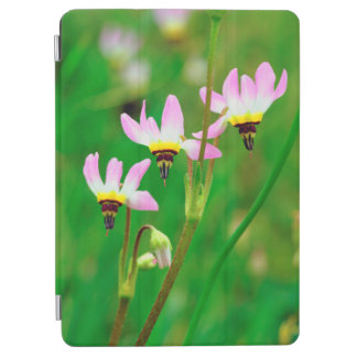 Shooting Star Wildflowers in Mission Trails Park iPad Air Cover