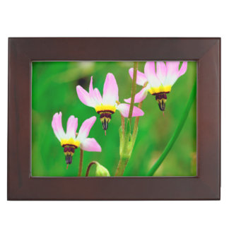 Shooting Star Wildflowers in Mission Trails Park Keepsake Box