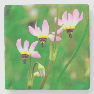 Shooting Star Wildflowers in Mission Trails Park Stone Coaster