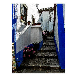 Shop and Steps in Obidos Portugal Postcard