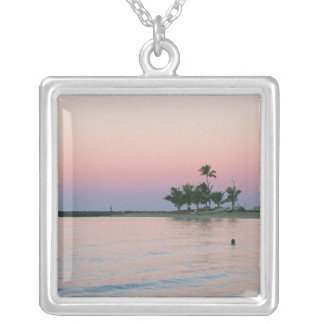 Shore 11 silver plated necklace