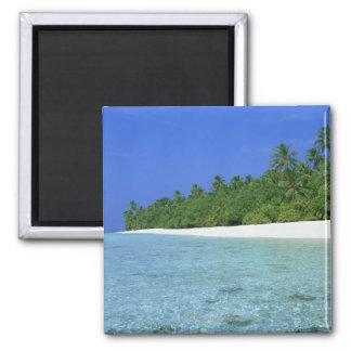 Shore 14 magnet