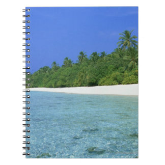 Shore 14 notebooks