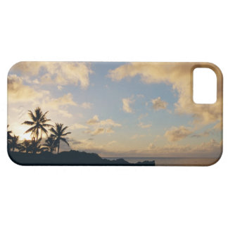Shore 5 case for the iPhone 5