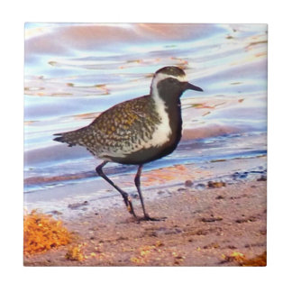 Shore bird in Hawaii Small Square Tile
