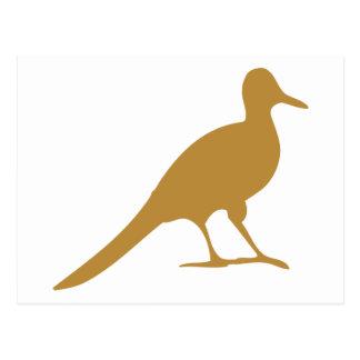 Shorebird Waders Shorebirds Bird Birds Seagull Post Cards