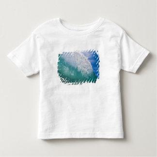 Shorebreak wave 2 t shirt