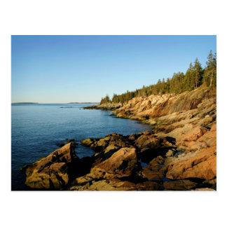 Shoreline Acadia Postcard
