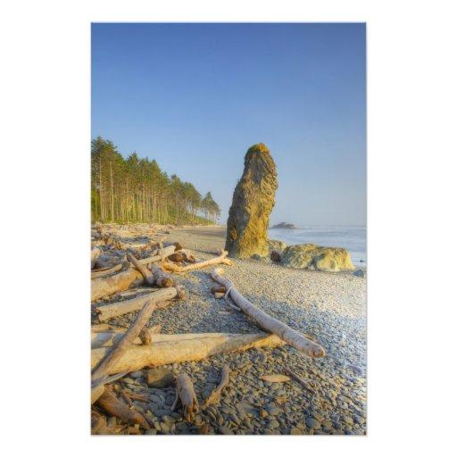 Shoreline and Seastacks, Ruby Beach, Olympic Art Photo