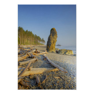 Shoreline and Seastacks, Ruby Beach, Olympic Poster