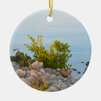 shoreline with rocks and plants of river round ceramic decoration