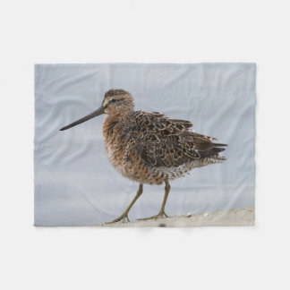 Short-billed Dowitcher Fleece Blanket