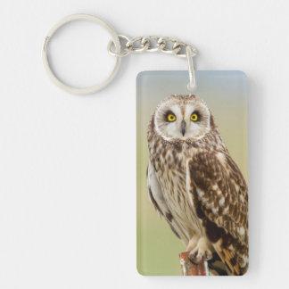 Short Eared Owl At Ninepipe Wma Near Ronan Double-Sided Rectangular Acrylic Key Ring