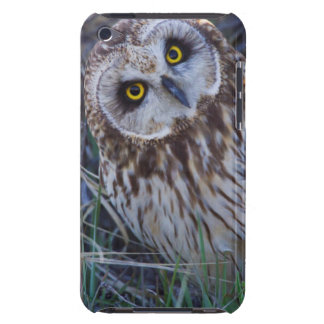 Short-eared Owl Barely There iPod Cases