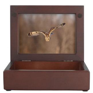 Short-eared owl diving towards the ground keepsake box