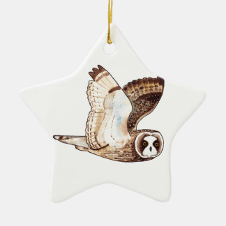 Short eared owl flying by ceramic star decoration