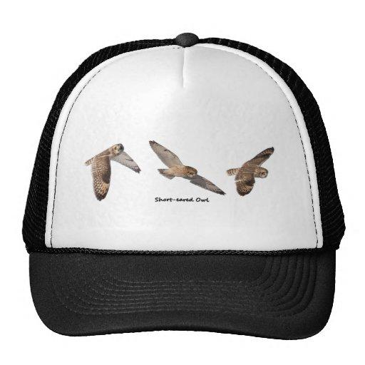 Short-eared Owl in Flight Mesh Hat