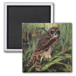 Short-eared Owl in Wetlands Fridge Magnet