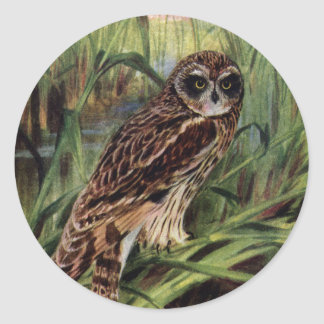 Short-eared Owl in Wetlands Round Sticker