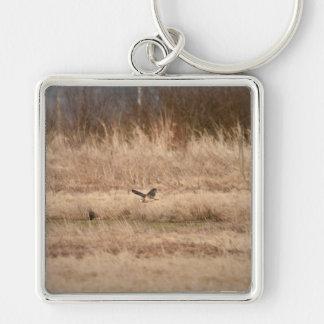 Short-eared Owl Key Chains