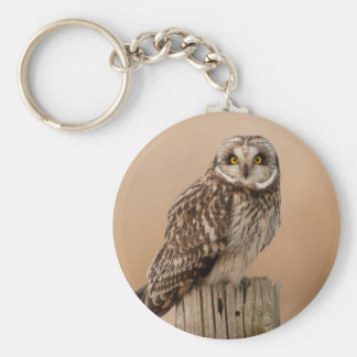 Short eared owl key chain