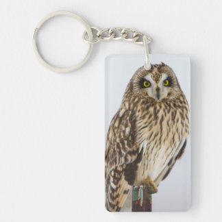 Short-eared Owl on fence post Double-Sided Rectangular Acrylic Key Ring