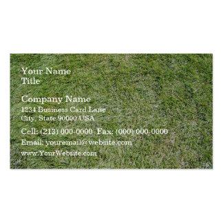 Short Fresh green grass texture Business Card Templates