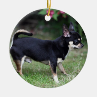 Short Haired Chihuahua Standing Christmas Ornament