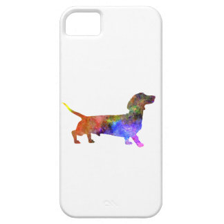 Short Haired Dachshund 01-2 iPhone 5 Cases