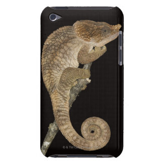 Short-horned chameleon(Calumma brevicornis) Barely There iPod Cover
