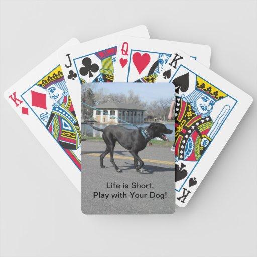 Short Life Dog Playing Cards