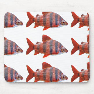 Short nose Crown tetra- mouse pad, No.01 Mouse Pad