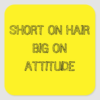SHORT ON HAIR BIG ON ATTITUDE STICKERS
