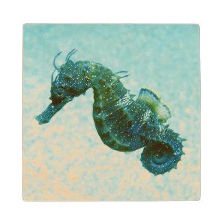 Short-Snouted Seahorse | Crimea, Russia Wood Coaster