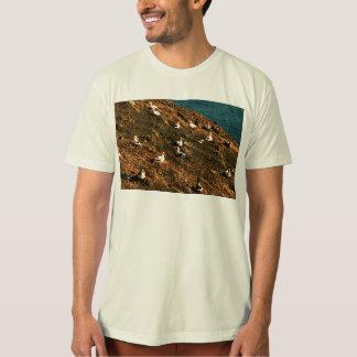 Short-tailed Albatross T Shirt