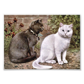 Shorthaired Cats Vintage Painting Photo Print