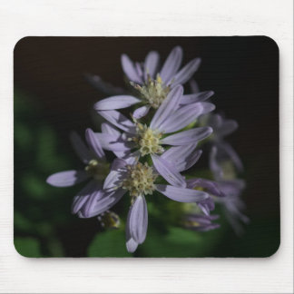 Short's Aster Purple Autumn Wildflower Mousepad