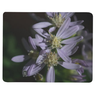 Short's Aster Purple Wildflower Pocket Journal