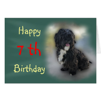 Shorty Lhasa Apso-Shih Tzu Card-customize Card
