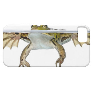 Shot of a Edible frog surfacing in front of a Case For The iPhone 5