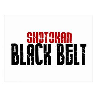 Shotokan Black Belt Karate Postcard