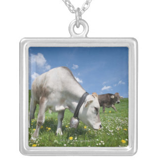 Shots were made by using a wide angle lens. silver plated necklace