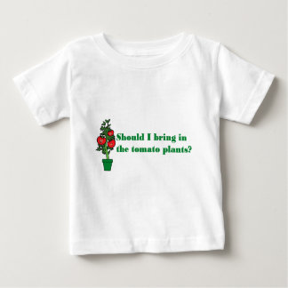 Should I bring in the tomato plants? Tees