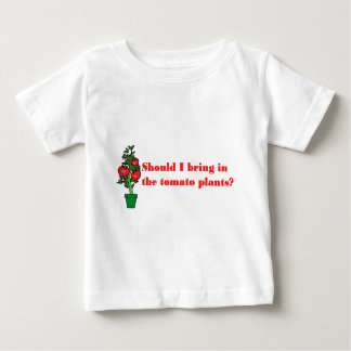 Should I bring in the tomato plants? T Shirt