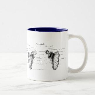 Shoulder blades mugs
