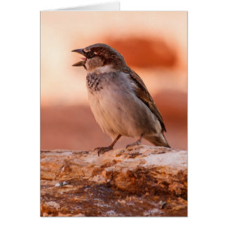 Shout Out Loud Greeting Card